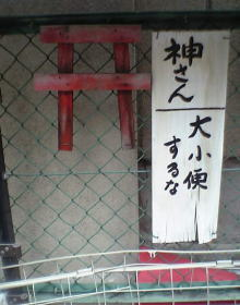 20041002-041001_01.jpg